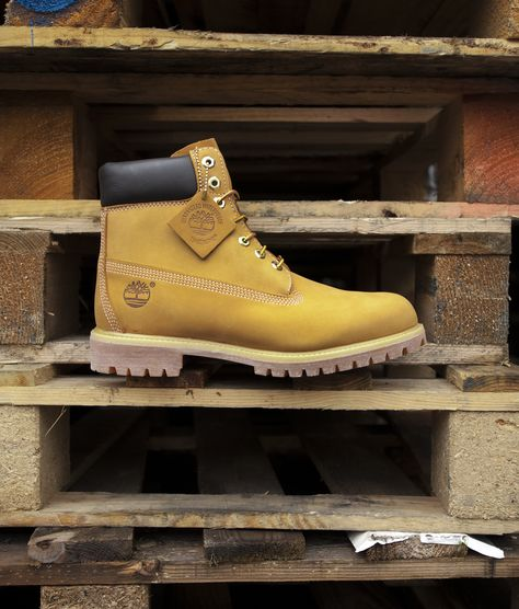 Timberland natural 6 inch premium boots | Boots, Timberland