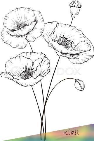 Jan 3 2020 Mohnblume Kunst Grun Stock Vektor Colourbox Kotkoa Photos Illustrations And V In 2020 Flower Sketches Poppy Flower Drawing Flower Line Drawings