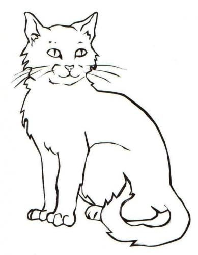 Pin Von Ggiulia Tk Auf Disegni Gatti Ausmalbilder Katzen Kin