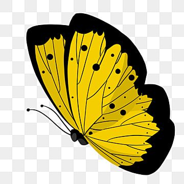 Flying Yellow Butterfly Illustration Butterfly Clipart Yellow Butterfly Png Transparent Clipart Image And Psd File For Free Download Butterfly Illustration Butterfly Clip Art Yellow Butterfly