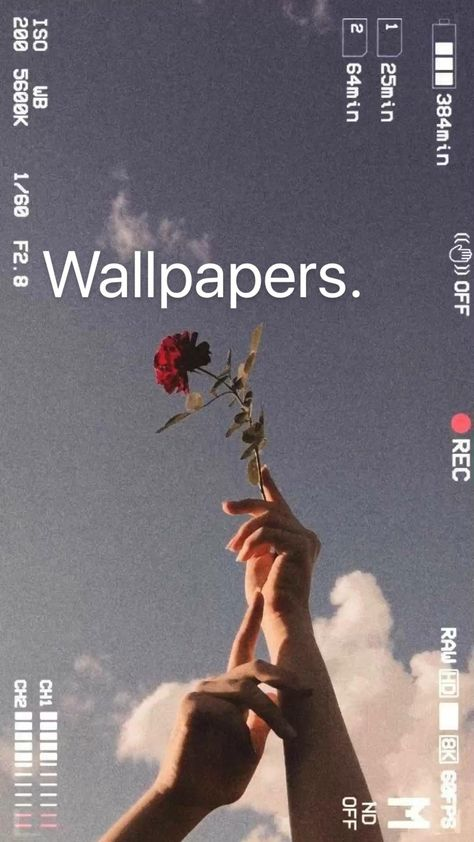 How to make wallpapers for phone iphone vintage aesthetic backgrounds freetouse