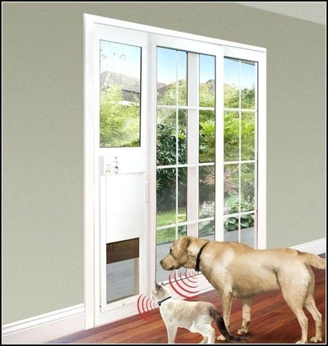 Best Electronic Dog Door Reviews Smart Dog Door Sliding Doors