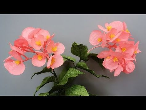 Abc Tv How To Make Erythronium Grandiflorum Paper Flower From