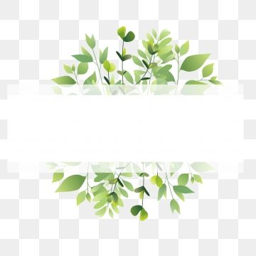 Green Leaf Frame Png And Vector Green Leaf Background Flower Frame Frame Clipart