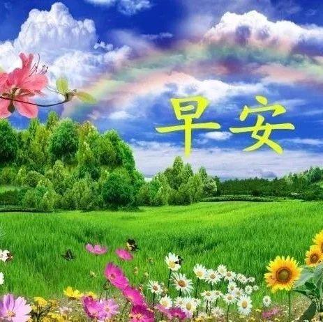 pin by luan lee on 好美风景早安问候 good morning greetings morning greeting greetings