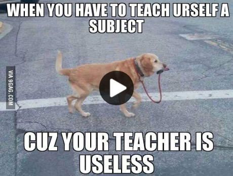 Teachers Nowadays Funny Gif Funny Memes Best Funny Pictures