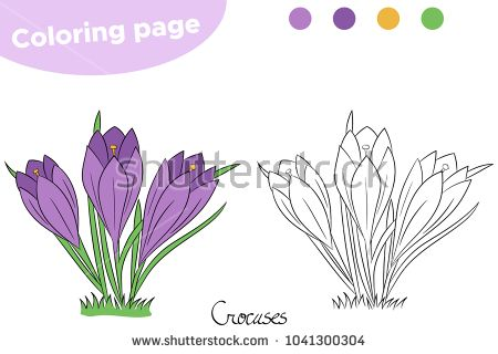 Coloring Page For Children Spring Flowers Crocuses Hand Drawn