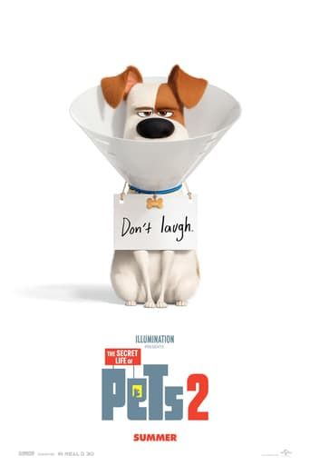 The Secret Life Of Pets 2 2019 Hindi Dubbed Dvdrip Dvdscr Hd Avi