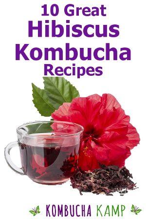 Hibiscus Kombucha Recipe Use Hibiscus In First Second Ferment Kombucha Recipe Kombucha Flavors Hibiscus Recipe