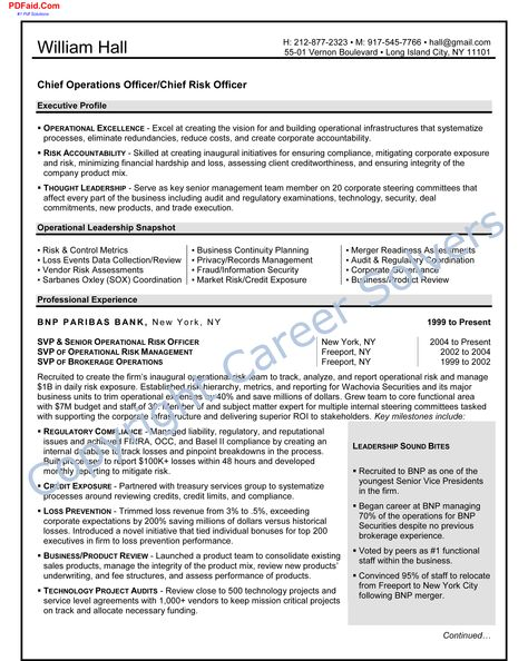 Sox Auditor Sample Resume Gorgeous Nice Attractive But Simple