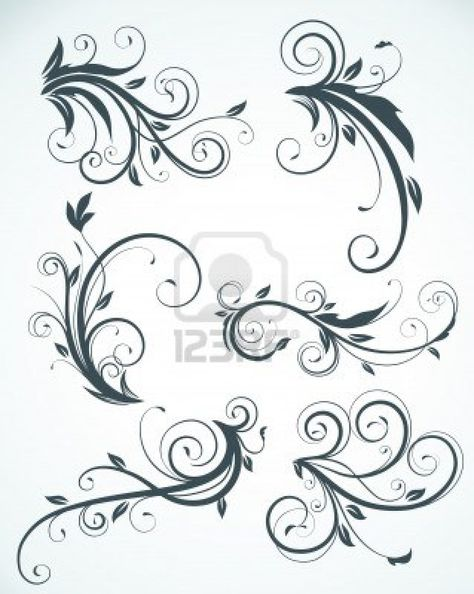 illustration set of swirling flourishes decorative floral elements  Stock Photo - 6989701