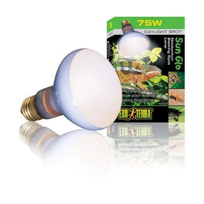 Exo Terra Sun Glo Basking Spot Lamp Set Of 2 Watt 150 W Lamp Sets Aquarium Lighting Wire Lights
