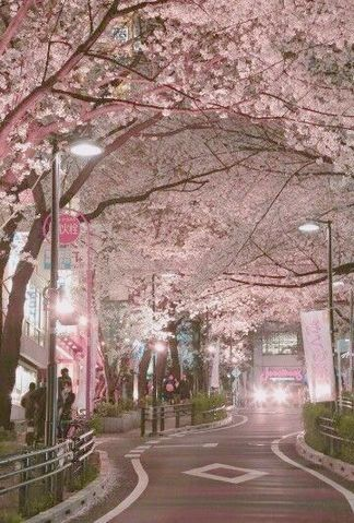 If You Re In The Fragrance Mist Lineup You May Want To Buy Up Everything You Can Now During The Start Of The Month O Beautiful Places Aesthetic Japan Scenery