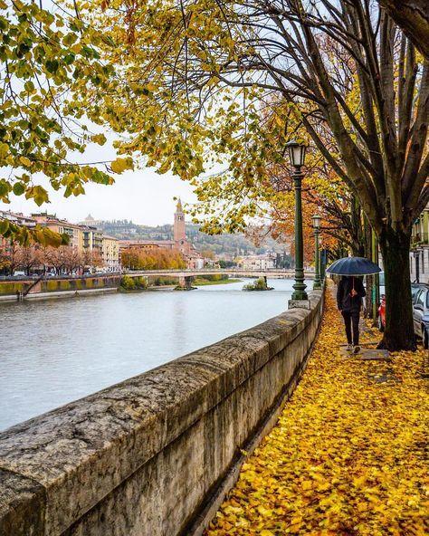 L'image contient peut-être: arbre, plante, ciel, pont, plein air, nature et eau