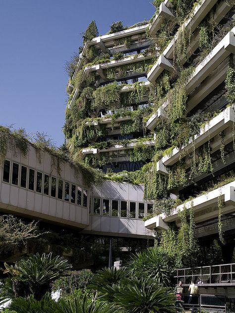 Edifici Banca Catalana in Barcelona, by Fargas & Tous, built in 1978 as a bank headquarters. Abandoned Buildings, Abandoned Places, City Ville, Apocalypse Aesthetic, Building Images, Design Jardin, Brutalist, Green Building, Gaia