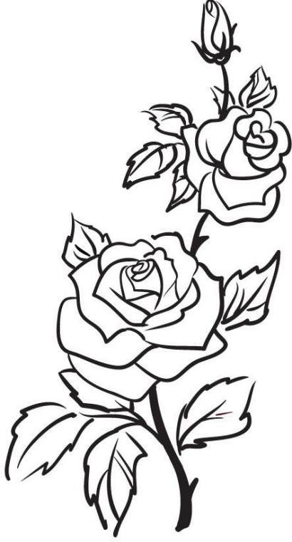 45 Ideas For Flowers Design Drawing Rose Flower Outline Rose Outline Rose Outline Tattoo
