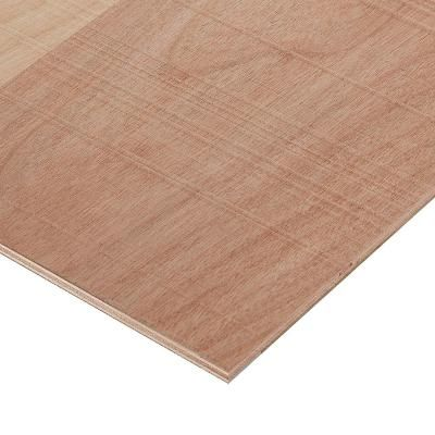 Columbia Forest Products 1 2 In X 2 Ft X 4 Ft Rough Sawn Birch Plywood Project Panel 3912 The Home Depot In 2020 Plywood Projects Rustic Hardwood Project Panels