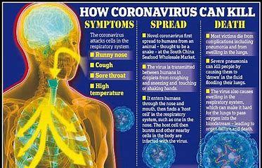 Pin On Coronavirus Covid 19