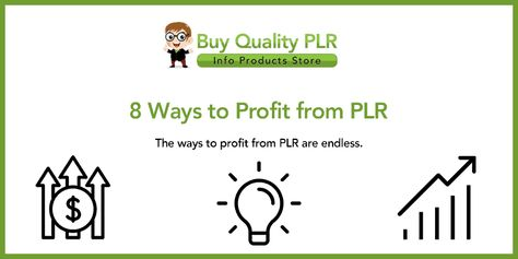 8 Ways to Profit from PLR | The Best Methods To Profit From PLR Online