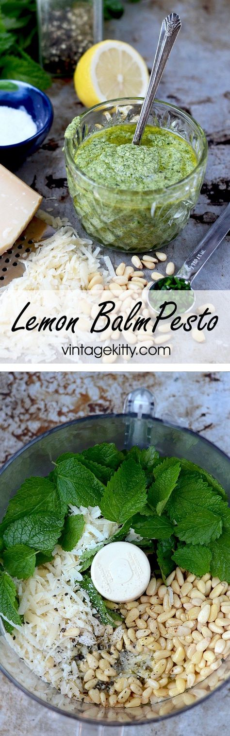 When life gives you lemon balm, make Lemon Balm Pesto! This mint family herb is…