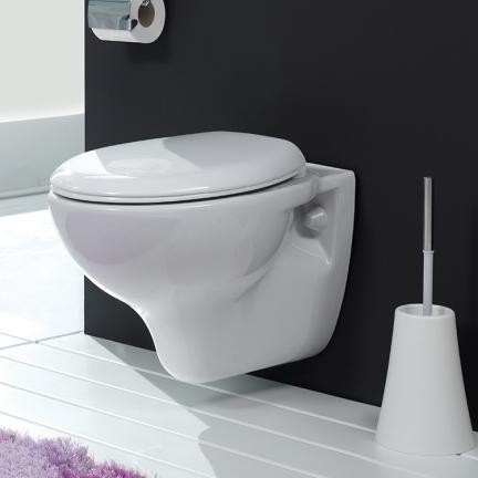 Wall Mounted Toilet Wall Hung Toilet Qualitybath Com Wall