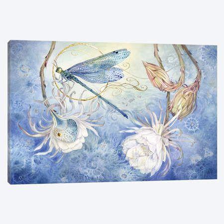Damsel Fly Iii Canvas Art By Stephanie Law Icanvas Art Canvas Prints Canvas Art