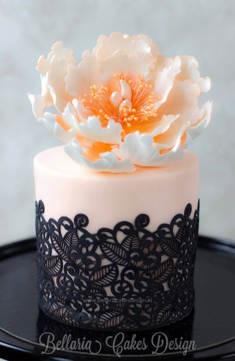 Gorgeous mini cake Design by Riany Clement. The lace is made with a baroque lace mat: http://www.lindyscakes.co.uk/shop/Baroque-Sweet-Lace-Silicone-Mat-silikomart.html