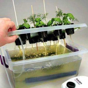 Initial Fill For Hydroponics Hydroponics System Hydroponics Kits Hydroponic Nutrient Solution