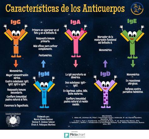 Características de los anticuerpos