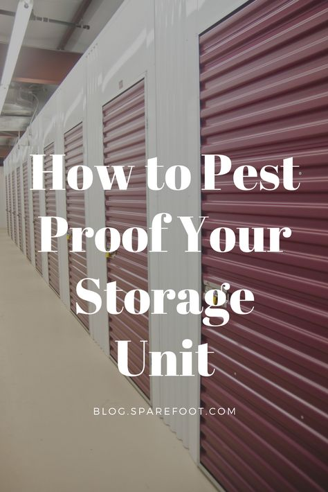 How To Pest Proof Your Storage Unit Self Storage Units Self Storage Diy Storage