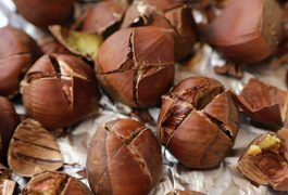 b0a393da16b0fe8d1d312b59cc7968d7 - How To Get Macadamia Nuts Out Of Their Shells