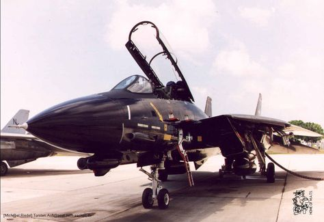 """Grumman F-14A Tomcat of VF-213 """"Black Lions"""" 