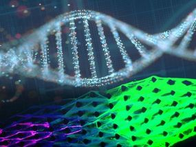 Regenerating Robots Machines Made From Dna Show Signs Of Life