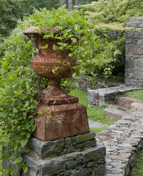 Garden - A plant potted in a weathered urn
