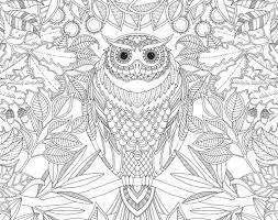 Resultado De Imagen Para El Jardin Secreto Libro Para Colorear