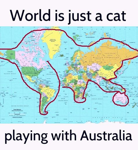 #Funny #map of the #world. #cat #joke #meme #humour #humor