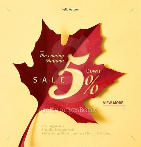 Email Marketing Designs for Fall | Fall Sale Ads