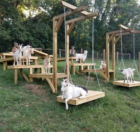 Goat shelter / jeux pour chèvres / toys for goats / abri chèvres The Farm, Mini Farm, Small Farm, Goat Playground, Goat Shed, Goat Shelter, Goat Barn, Raising Goats, Keeping Goats