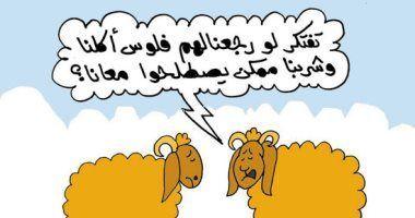 الخبر غير متاح Caricature Novelty Sign Arabic Calligraphy