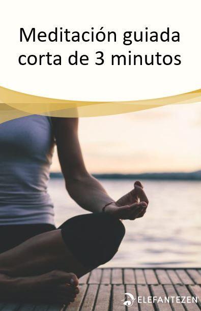 Meditación Guiada Corta De 3 Minutos Elefante Zen Meditacion Guiada Corta Meditacion Guiada Para Principiantes Meditacion Budista