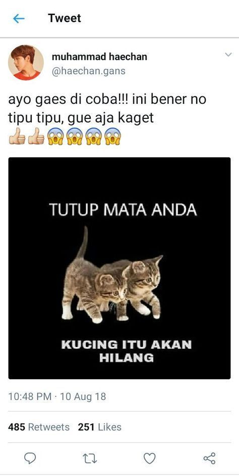 Memes Indonesia Patient 62 Ideas Ideas Indonesia Memes Patient
