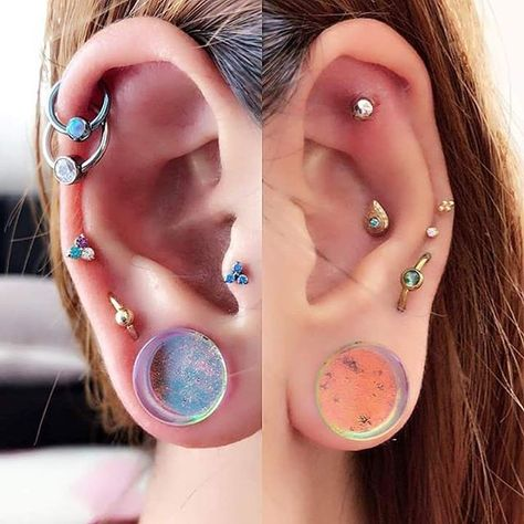 The amazing ears of @tkd_asami , topped off with a pair of Lavender Gold Plugs. We love our japanese customers! Each of the DD colors has a unique color shift and flash, and they are all available from 0ga(8mm) to 2
