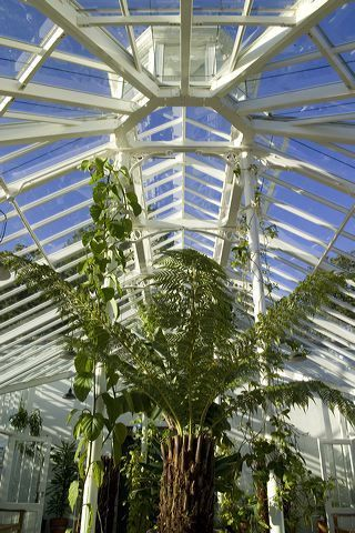 11 Brilliant Metal Roofing Overhang Ideas Roof Architecture Fibreglass Roof Victorian Greenhouses