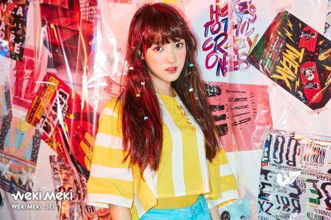 My K-Pop Obsession (requests open) - Weki Meki