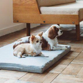ベッド インテリア より豊かな暮らしを愛犬と フリーステッチ Free Stitch はシンプルで良質な小型犬 中型犬 大型犬のためのドッググッズブランドです ゲージ 犬 大型犬 犬