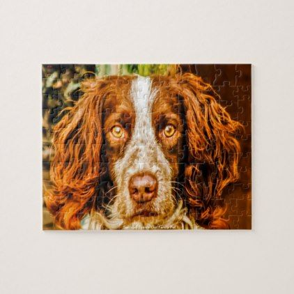 Welsh Springer Our Family Pet Jigsaw Puzzle Zazzle Com Spaniel Dog Family Pet Springer Spaniel