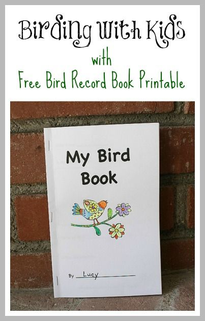 Free Printable~ Bird Book for Kids (Great resource for recording all those birds you see while birdwatching!)