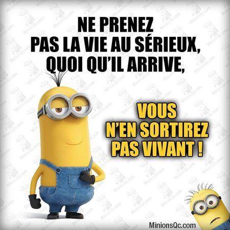 Les Minions - Expressions | textes | phrases - La Carterie Flavie | Minion  humour, Citations rire drôles, Blague minion