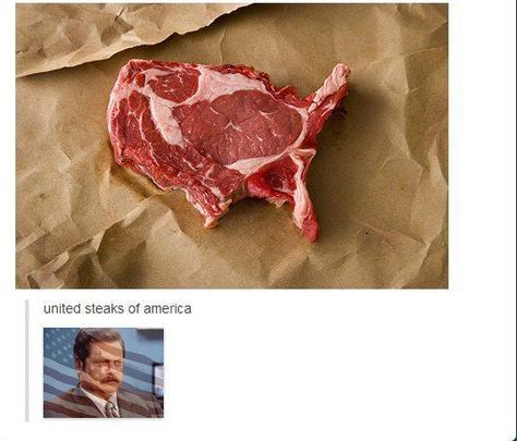 'MURICA Ron Swanson (this is the best thing ever) Really Funny, Funny Cute, The Funny, Hilarious, Parks N Rec, Parks And Recreation, Lol, Look Girl, Ron Swanson