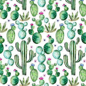 Watercolor Cacti By Southprints Succulents Wallpaper Watercolor